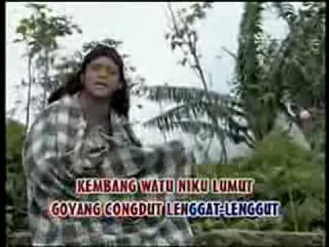 Didi Kempot - Adus Opo Raup (Official Lyric Video)