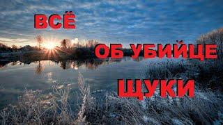 Гости с СЕВЕРА рассказали ВСЕ ОБ УБИЙЦЕ ЩУКИ SeMano TV