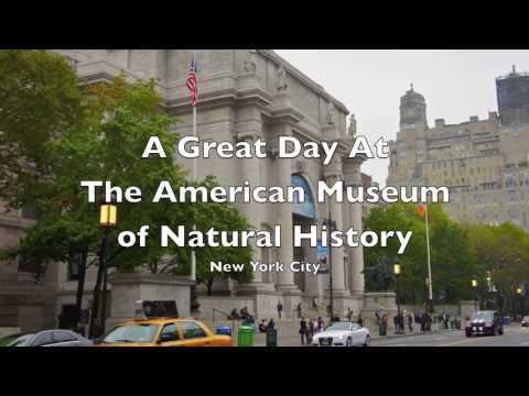 A Great Day at The American Museum of Natural History
