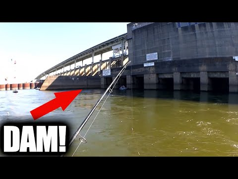 fishing-with-live-bait-and-casting-spoons-below-the-dam!