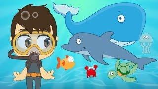 Aquatic Animals in French for Kids - الحيوانات للأطفال - حيوانات البحر باللغة الفرنسية للاطفال
