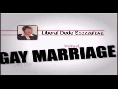 Best and worst tv political ads midterm elections 2010  Art or Trash