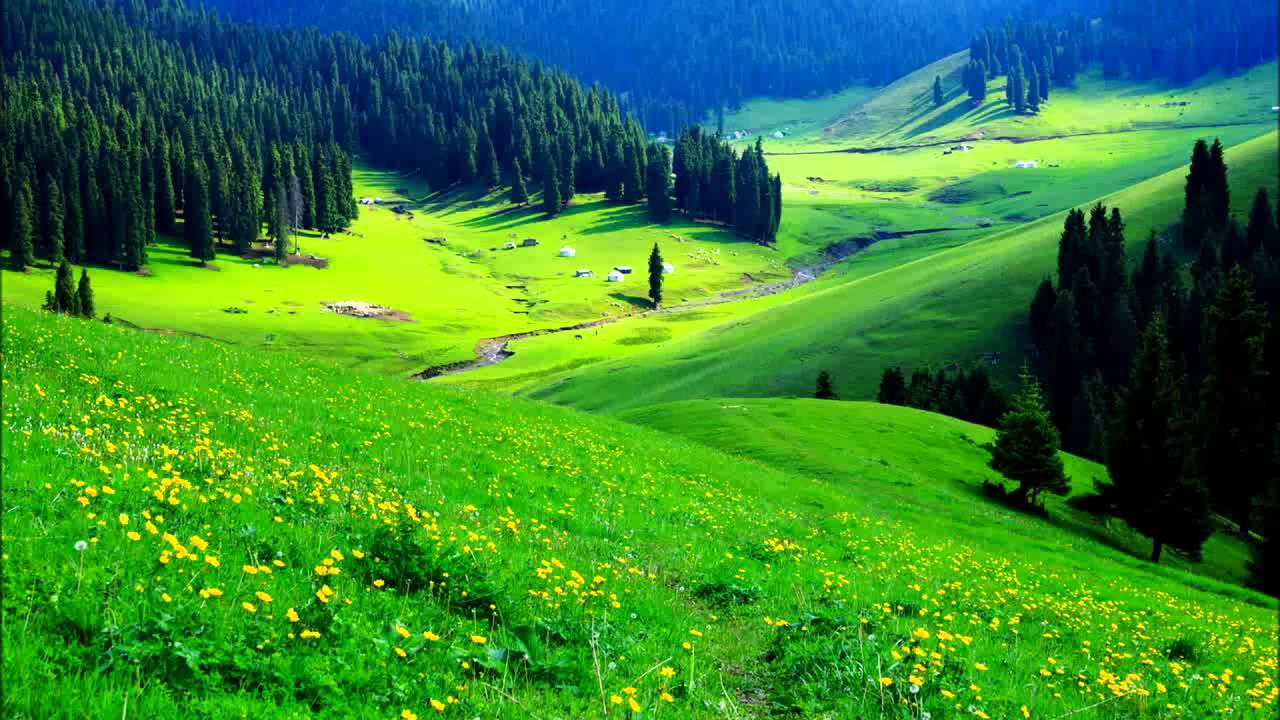 mountain and the greenary - photo #13