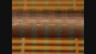 John Frusciante - Wednesday Song