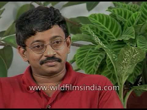 Ram Gopal Varma, Indian filmmaker on Hindi film 'Satya'