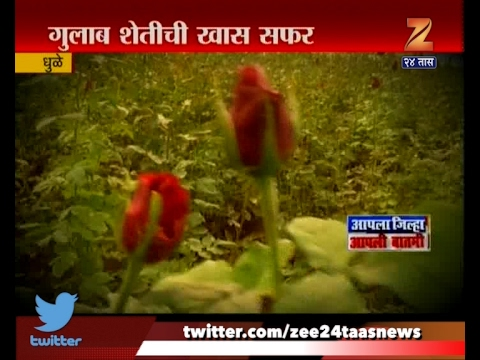 Dhule | Special Visit To Rose Farm