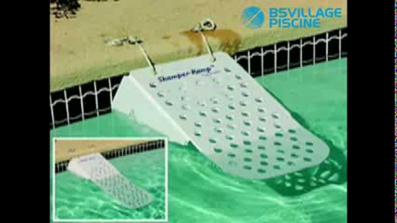 Rampa di risalita dalla piscina skamper ramp per cani e for Animali da laghetto