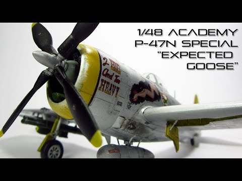 "1/48 P-47N Special ""Expected Goose""/2 Big and Too Heavy/Short Snorter Completed Pictures"