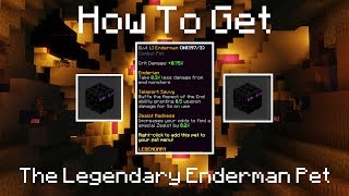 How to Get the Legendary Enderman Pet   Hypixel Skyblock