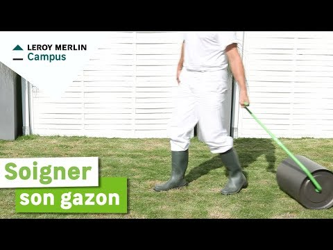 Comment Soigner Son Gazon Leroy Merlin Youtube