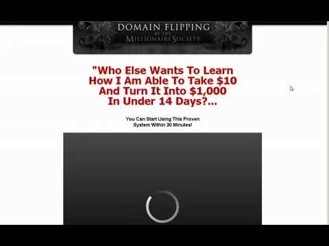 Domain Flipping by the Millionaire Society