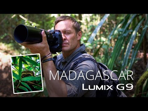 Lumix G9 in Madagascar with conservation photographer Joakim Odelberg