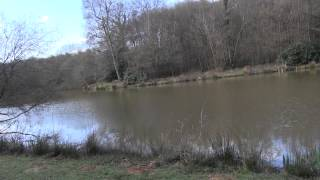 STREAM VALLEY LAKES, CROWBOROUGH, EAST SUSSEX