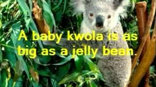 Josiah & Ariana: Koala Thumbnail
