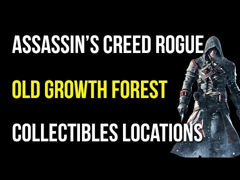 Assassin's Creed Rogue Old Growth Forest Collectibles/Quest Items/Viking Sword/Templar Relic