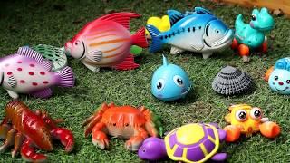 BiBo TV: Fishing Game for Children - Fishing Videos for Children - Fishing for Kids - Câu cá đồ chơi