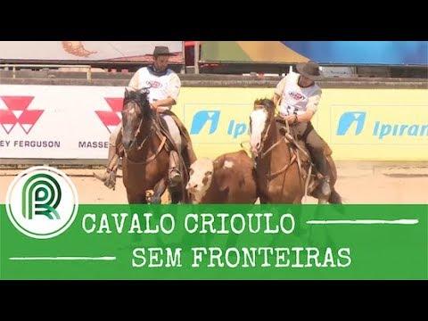 Confira o programa Cavalo Crioulo sem Fronteiras