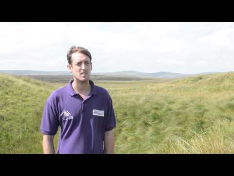North Pennines AONB Partnership - Conservation and Land Management