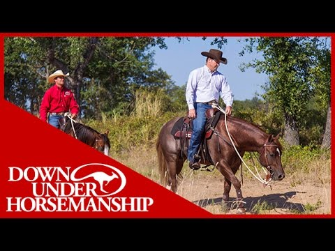 Clinton Anderson: How to Train Your Horse to Ride in a Group - Downunder Horsemanship