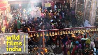 Huge congregation of devotees throng Shri Kamleshwar Mahadev temple