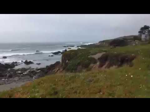 At the Pacific Ocean in Cambria California with JoshWillTravel