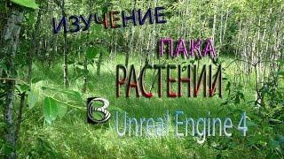 Уроки Unreal Engine 4. Обзор растительности.