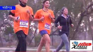 1 500 persons run for road safety in 'Punjab Half Marathon-2017'