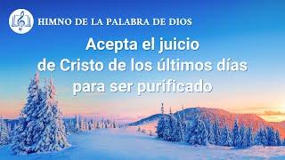 Canción cristiana | Acepta el juicio de Cristo de los últimos días para ser purificado