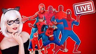 Spider-Man's