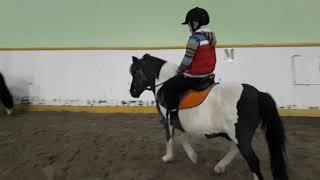 Уроки ВЕРХОВОЙ езды. Кони-пони. Еду на лошади. Короткое видео с занятия по верховой езде.