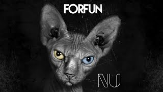 Forfun - Arriba Y Avante