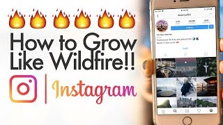 How To Grow Your Instagram like Wildfire!