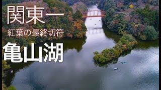 【亀山湖の紅葉】空撮ドローン 絶景風景!千葉名所 4K Drone Japan