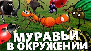 МУРАВЬИ В ОКРУЖЕНИИ - Empires of the Undergrowth