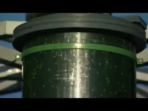 Les algues, l'énergie du futur