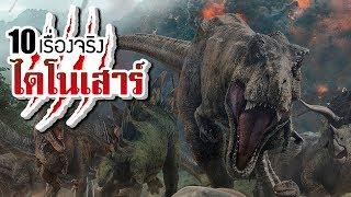 10 เรื่องจริงของ ไดโนเสาร์ (Dinosaur) ที่คุณอาจไม่เคยรู้ ~ LUPAS