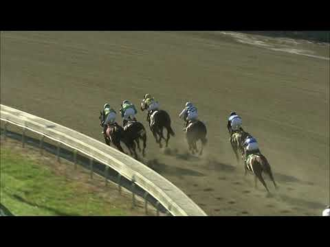 video thumbnail for MONMOUTH PARK 10-21-20 RACE 8