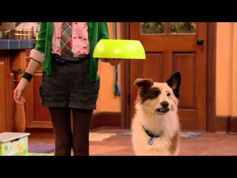 Dog With A Blog - Disney Channel Official