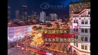 新加坡牛车水农历新年灯饰亮灯 Singapore Chinatown Light Up