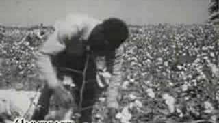 Lonnie Donegan - Pick a Bale of Cotton (video by 41)