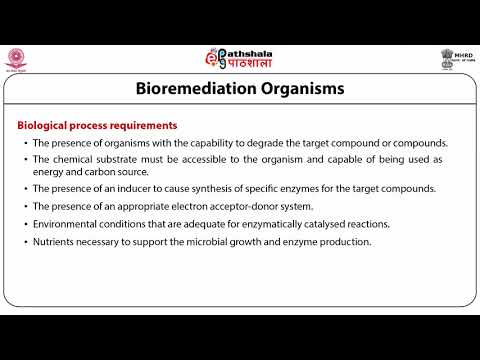 bioremediation of soil & water contaminated with pesticides & toxic chemicals