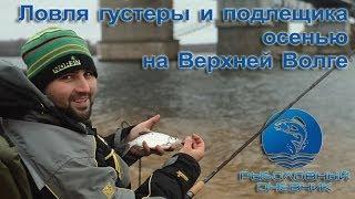 Ловля на фидер осенью густеры и подлещика видео : Рыболовный дневник