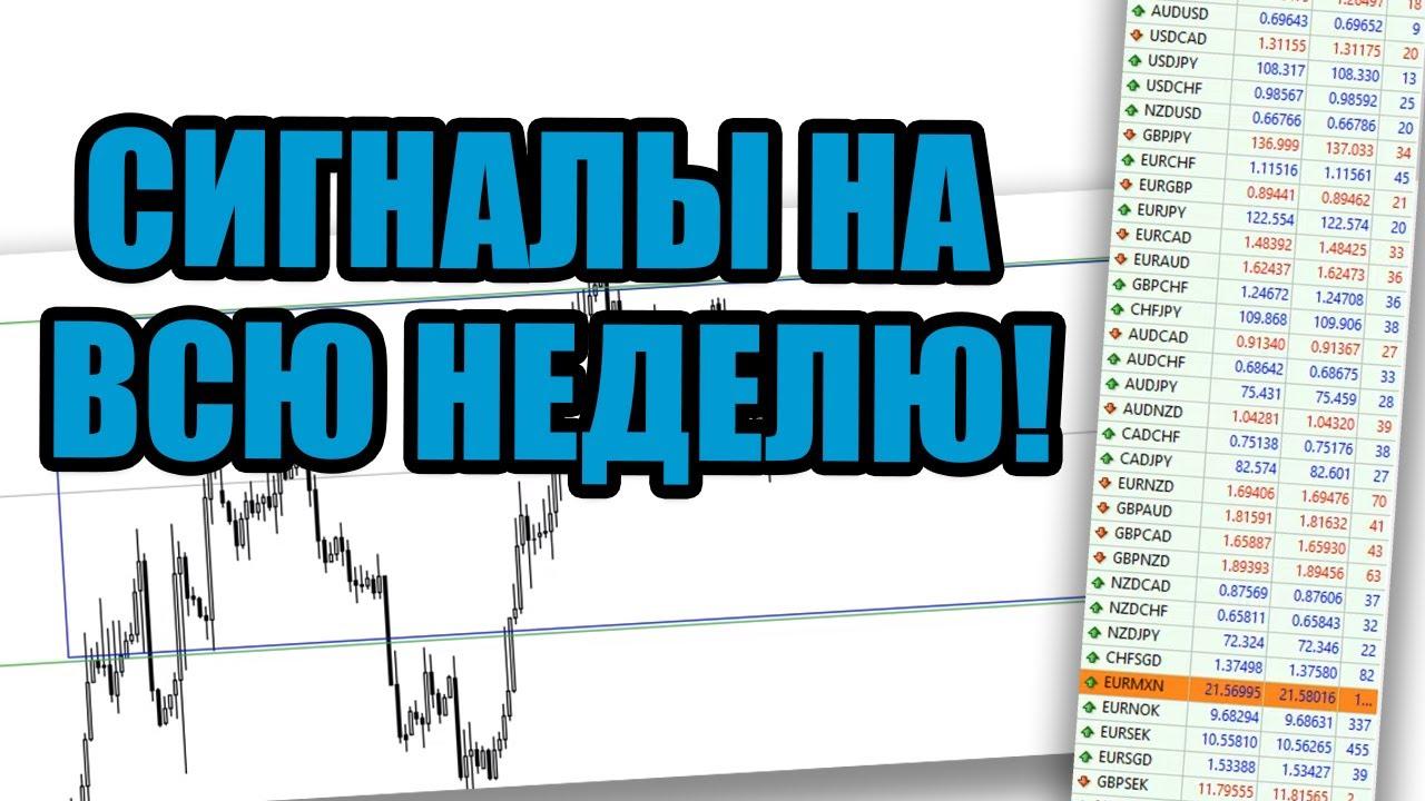 Что дает рынок? Анализ рынка с Александром Борских