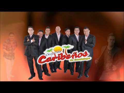 CARIBEÑOS DE GUADALUPE - NO DUDES DE MI ( DARWIN TORRES )