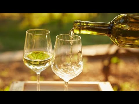 LAB Nebraska Plum Wine Review