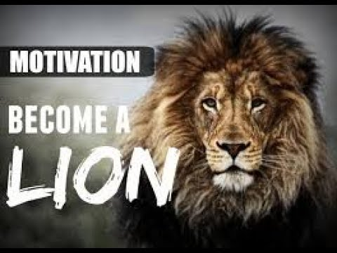 Life of Lion | Best Inspirational Video in...