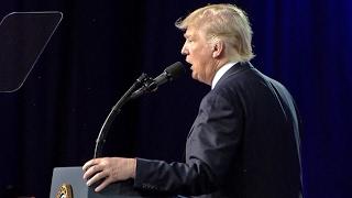 Trump: Chaos mit Methode