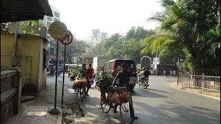 Walking in Mumbai - Sainath Road to Ramchandra Lane, Malad West, India, (on Christmas Day 25th Dec)