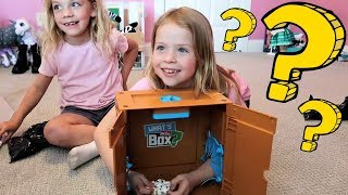 What's in the Box? CHALLENGE in Addy and Maya's Room!