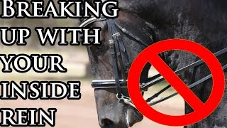 BREAKING UP WITH YOUR INSIDE REIN (Turning using only the outside rein) -Tash TV Episode 33 -